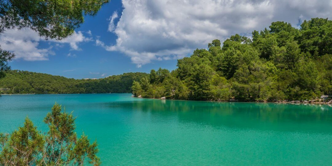 Dalmatian coast tour - Mljet 3